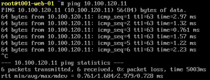 VMware NSX-T Tier-1 Gateway - ICMP Test - Web to DB